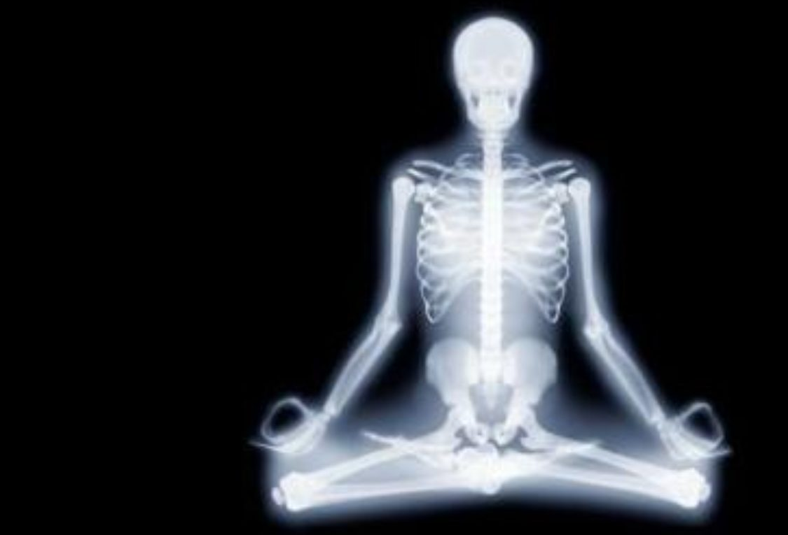 why study anatomy as a yoga practitioner or a yoga teacher? - triyoga