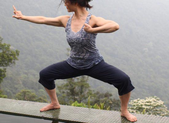 qigong for yoga teachers: an immersion